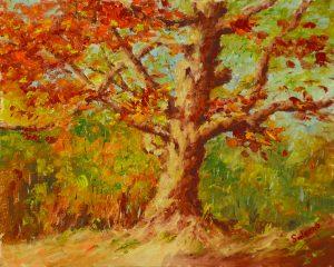 724 - Fall Oak