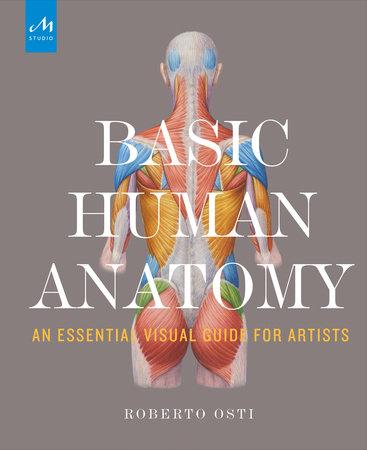 Basic Human Anatomy by Roberto Osti - Townsend Atelier - Townsend ...