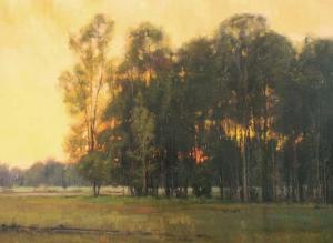 groves silent night