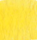 M Graham Watercolors - Yellows/Oranges